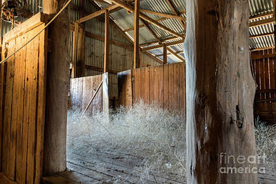 Photograph - Shearing Shed by Stuart Row