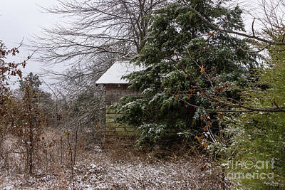 Photograph - Shed Abandoned by Jennifer White
