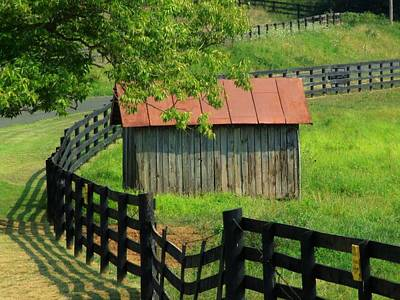 Shed And Fence Art Print by Michael L Kimble