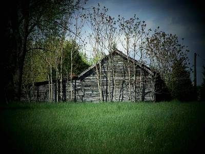 Shed And Trees Art Print by Michael L Kimble