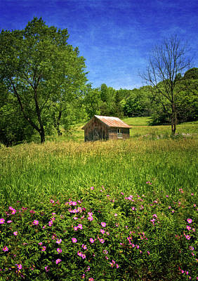 Photograph - Shed In A Meadow by Carolyn Derstine