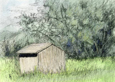 Mixed Media - Shed In The Field by David King