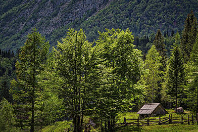 Photograph - Shed In The Slovenian Alps by Stuart Litoff