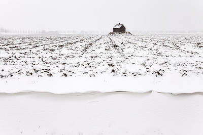 Shed On Mount In Snow, Polder The Biesbosch, Dordrecht, The Netherlands Print by Frank Peters