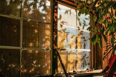 Shed Window Reflections Original by Bonnie Follett