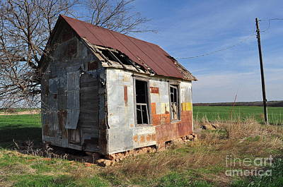 Photograph - Shed1 by Anjanette Douglas