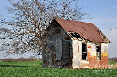 Photograph - Shed3 by Anjanette Douglas