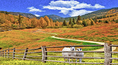 Photograph - Sheep And Road Ver 1 by Larry Mulvehill