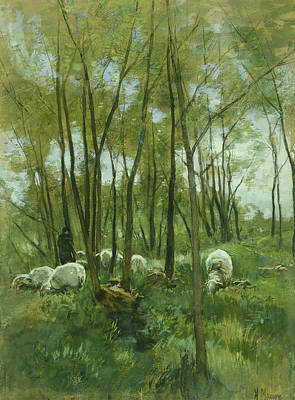 Sheep Herd In A Forest Art Print by Anton Mauve