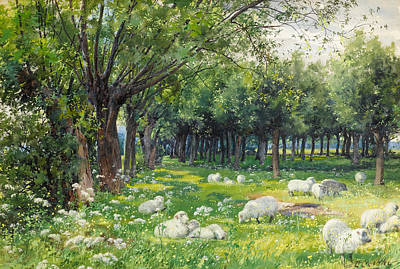 Sheep In An Orchard At Springtime Art Print