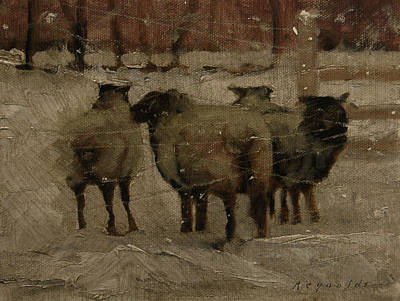 Sheep In The Snow Art Print by John Reynolds