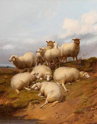 Sheep On A Grassy Knoll 1870 United Kingdom Art Print