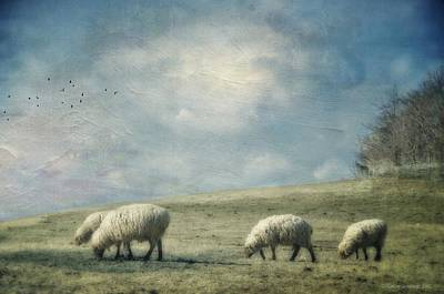 Sheep On The Hill Art Print by Kathy Jennings