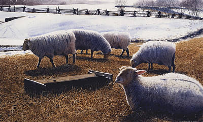 Winter Scenes Painting - Sheepish by Denny Bond