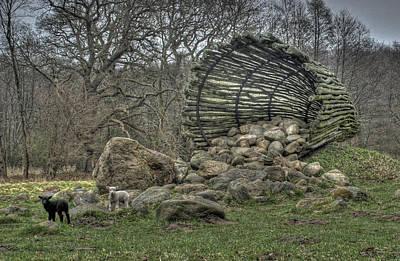 Animal Photograph - Sheeps by Jan Boesen