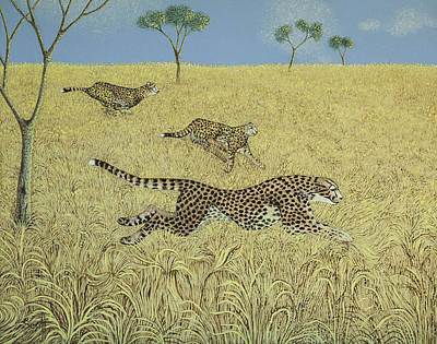 Cheetah Painting - Sheer Speed by Pat Scott