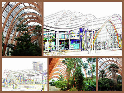 Photograph - Sheffield Winter Gardens Collage by Dorothy Berry-Lound