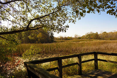Photograph - Sheldon Marsh Scenic Overlook - Autumn by Shawna Rowe
