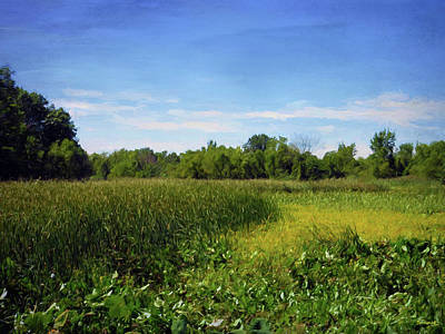 Digital Art - Sheldon Marsh - Summer Meadow 2 by Shawna Rowe