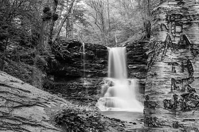 Photograph - Sheldon Reynolds Falls - 8581 by G L Sarti