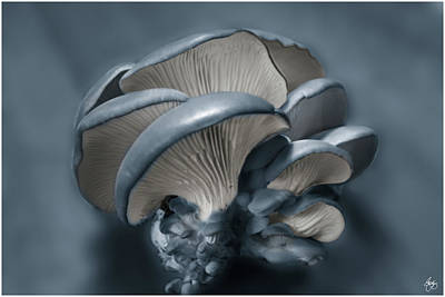Photograph - Shelf Fungus In Blue by Wayne King