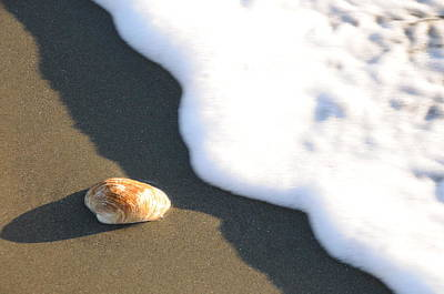 Beach Shell Sand Sea Ocean Photograph - Shell And Waves Part 3 by Alasdair Turner