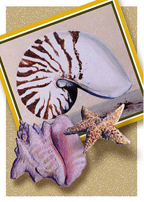 Painting - Shell Collage by Thomas Lupari