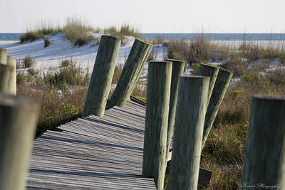 Panama City Beach Photograph - Shell Island Boardwalk by Debra Forand