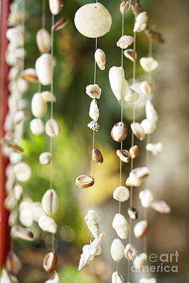 Wind Chimes Photograph - Shell Windchimes by Kyle Rothenborg - Printscapes