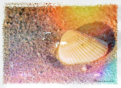 Photograph - Shelling Out by Marvin Spates