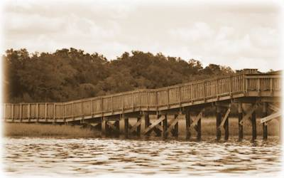 Photograph - Shellmound Walkway Sepia by Sheri McLeroy