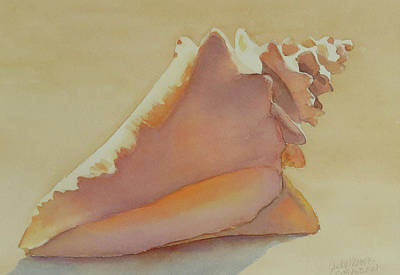Painting - Shells 3 by Judy Mercer