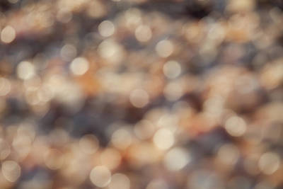 Photograph - Shells Abstract Blurred by Yoel Koskas