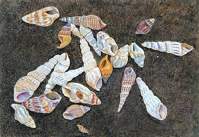 Painting - Shells From The Sea Of Galilee by Nick Payne