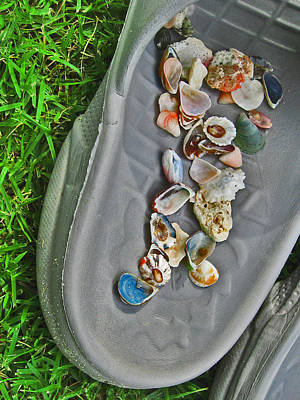 Shells In Slipper. Original by Andy Za
