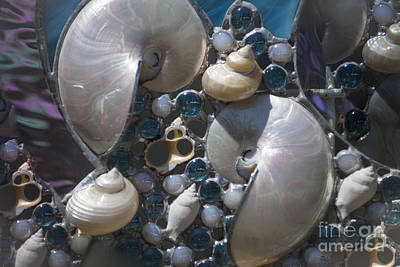 Photograph - Shells Of Love by Dale Powell