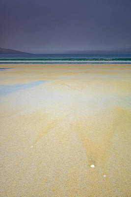Photograph - Shells On Luskentyre Beach, Harris by Neil Alexander