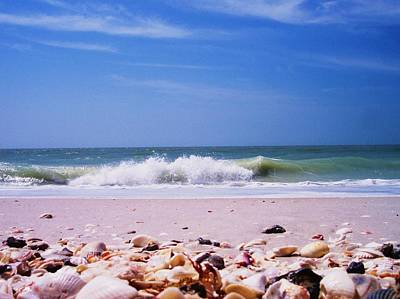 Photograph - Shells On The Shore by Anna Villarreal Garbis