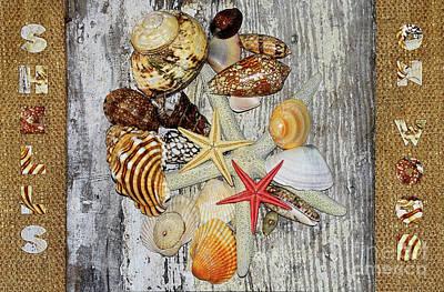 Photograph - Shells On Wood by Kaye Menner