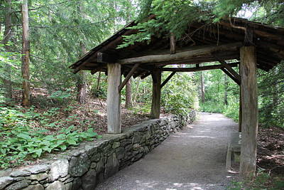 Photograph - Shelter On The Path by Allen Nice-Webb