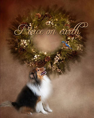 Photograph - Sheltie Christmas by TnBackroadsPhotos