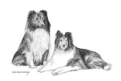 Shelties Original by Jack Pumphrey
