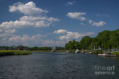 Photograph - Shem Creek Island Life  by Dale Powell