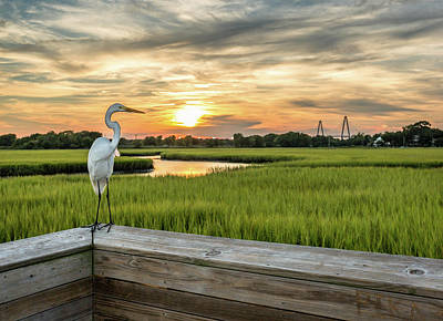 Photograph - Shem Creek Pier Sunset by Donnie Whitaker