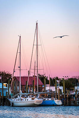 Photograph - Shem Creek Sailboats by Donnie Whitaker