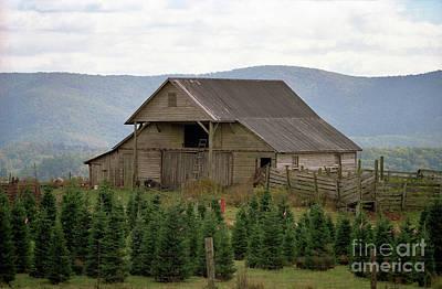 Photograph - Shenandoah Barn by Nicki McManus