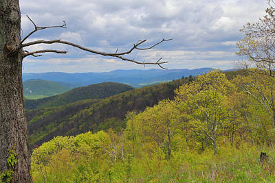 Photograph - Shenandoah National Park by John Moyer