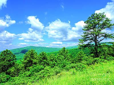 Photograph - Shenandoah National Park by John Rizzuto