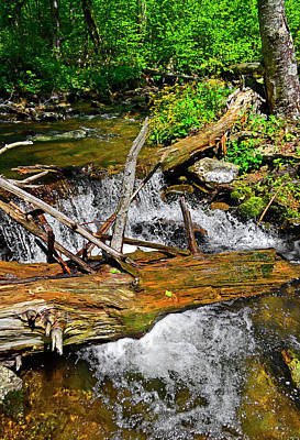 Photograph - Shenandoah National Park Stream 001 by George Bostian