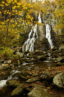 Photograph - Shenandoah National Park by Walt Sterneman
